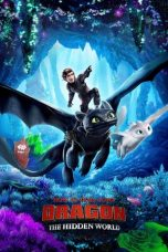 How to Train Your Dragon: The Hidden World sub